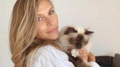 photos-les-stars-et-leurs-chats-une-veritable-histoire-d-amour