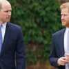 Lady Diana: la tragique manière dont William et Harry ont appris la mort de leur mère - Voici