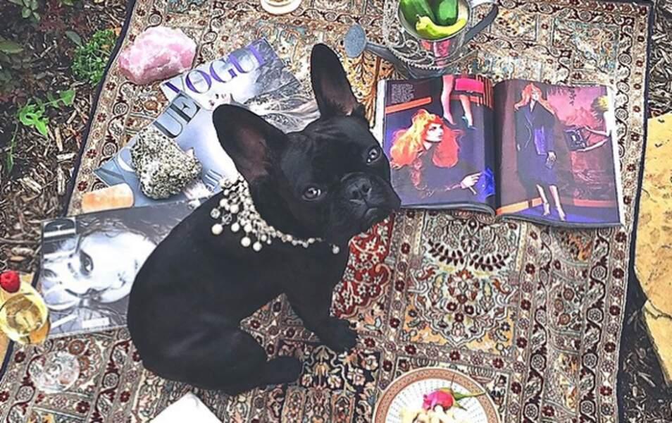 Lady Gaga pense qu'Asia a le droit d'être à la mode...