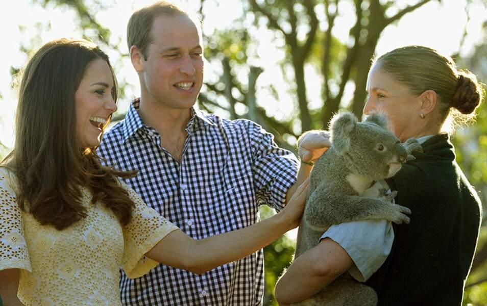 Direction le Taronga Zoo à Sydney !