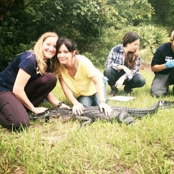 Elles y ont vu des alligators