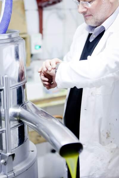 Saga de marque Le Petit Olivier : Aussitôt récoltées les olives sont pressées à froid