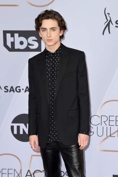Timothée Chalamet aux SAG Awards 2019, le 27 janvier, à Los Angeles