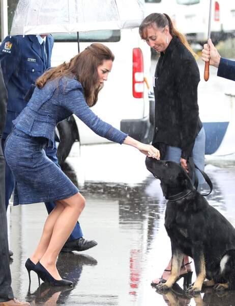 Kate, l'amie des bêtes