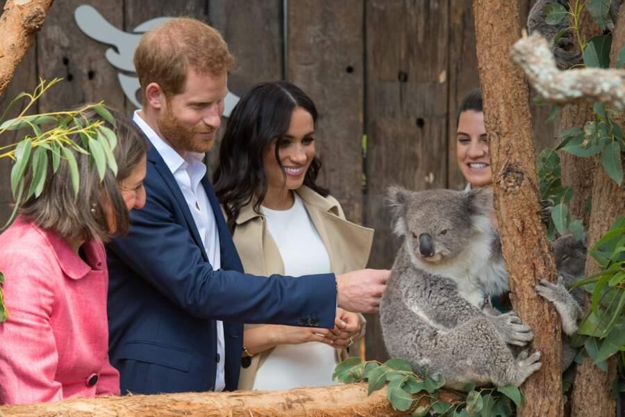 Le prince Harry et Meghan Markle ont visité le zoo de Taronga à Sydney