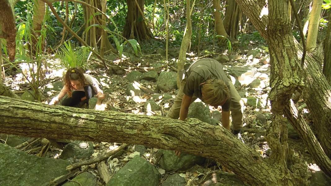 Koh-Lanta, les 4 Terres : Brice et Lola à l'épreuve d'orientation