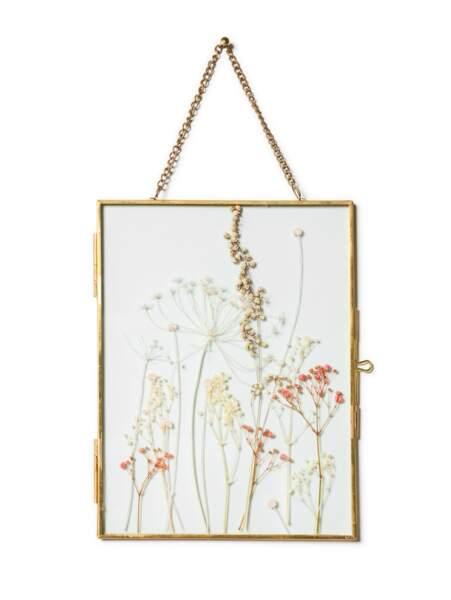 Herbier, Ivy Paysagiste, 35€