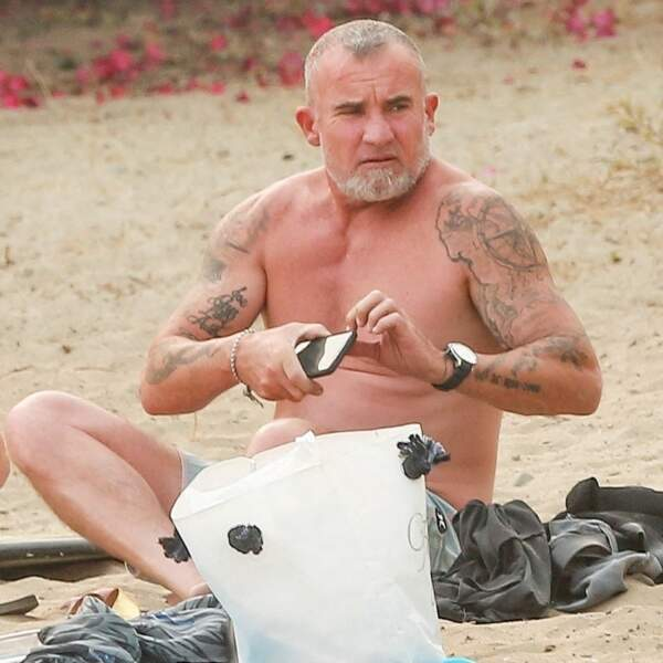 Dominic Purcell maintenant