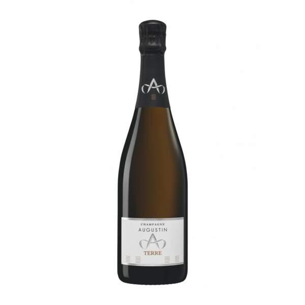 Champagne Augustin Cuvée Terre 2016, 29,90€ sur lepetitballon.com
